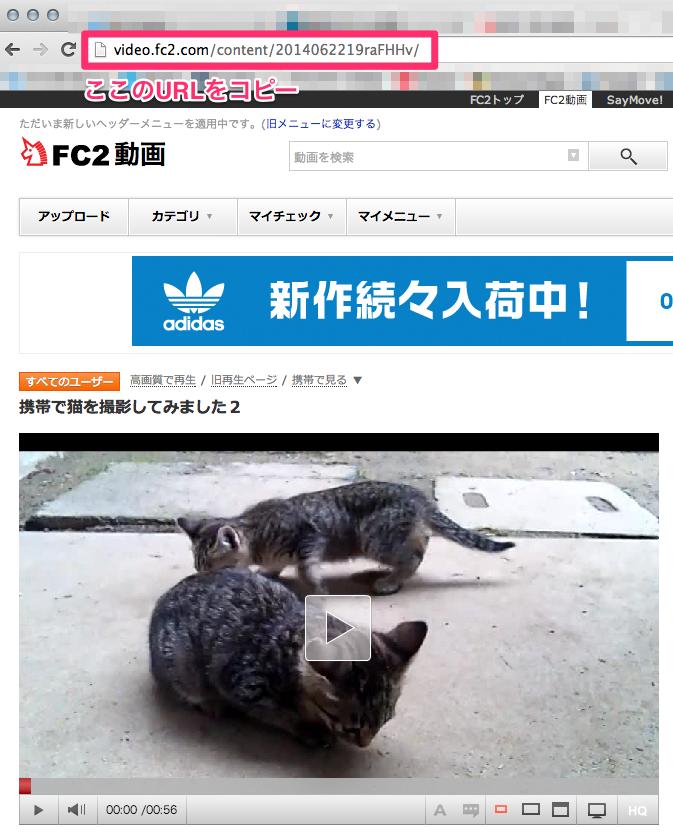携帯で猫を撮影してみました2_-_FC2動画